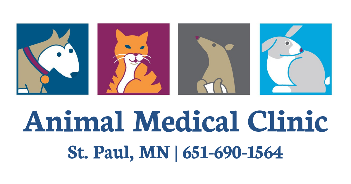 Animal Medical Clinic | Macgroveland Vet Clinic | St. Paul