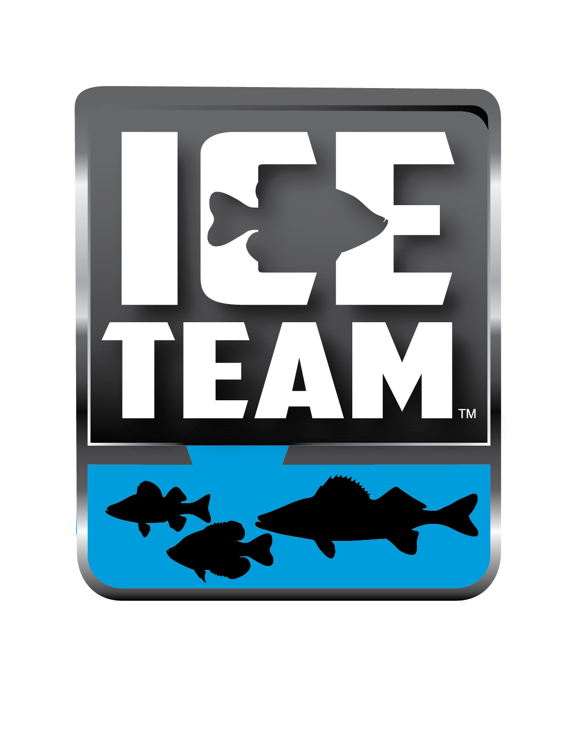 Ice Team logo-01_copy1