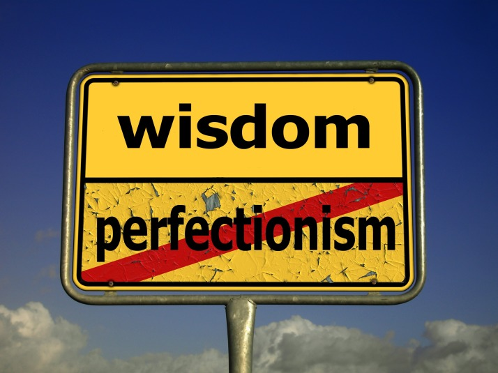 Wisdom isn't Perfection Sign